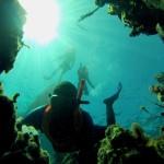 mar roatan honduras