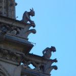 Gárgulas Catedral de Notre Dame