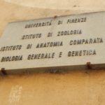 Universidade de Florença